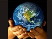 Cómo luchar contra el cambio climático