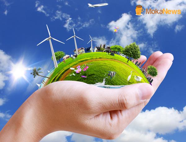 Becsa y los servicios energeticos