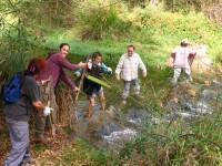 """¿En qué consiste el Programa de """"Playas, ríos, voluntariado y custodia del territorio"""" de la Fundación Biodiversidad?"""