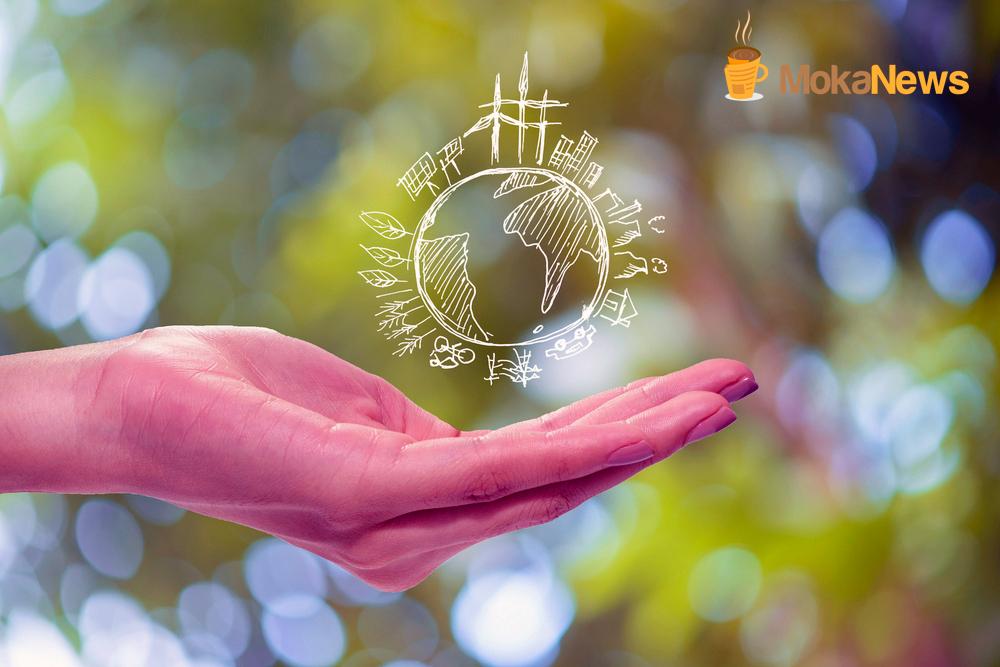 maat International protege el Medio Ambiente con sus plataformas tecnológicas
