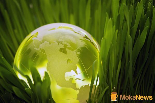 Opiniones sobre la calidad de CRM Synergies