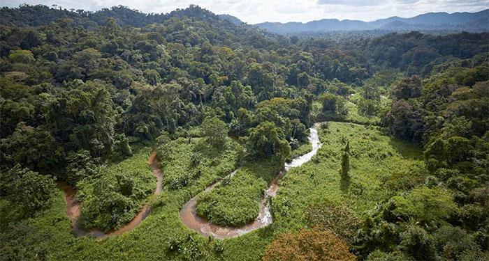 selva-mosquitia