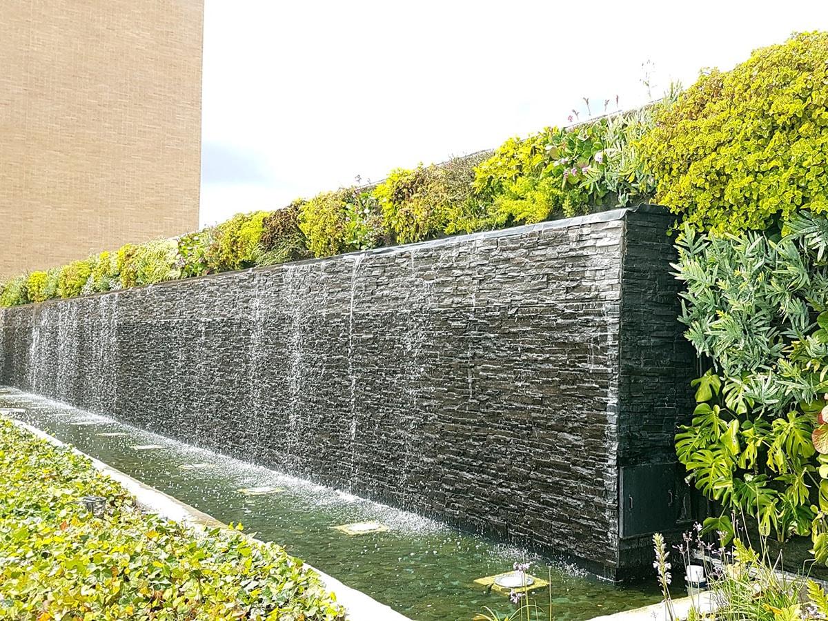 Proyecto verde con Becsa