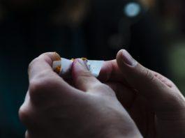 Smoking paper tiene el tipo de papel de liar perfecto para cada fumador
